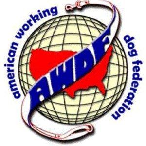 Member AWDF