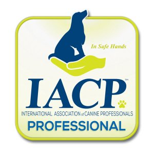 Member IACP